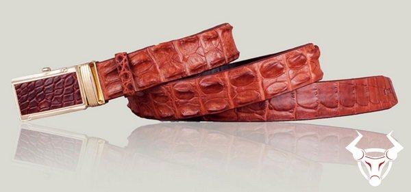 Dây nịt da cá sấu cao cấp TL14 giá chỉ : 849000₫