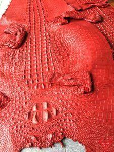 Da Cá Sấu Thuộc Nguyên Tấm Màu Đỏ Tươi