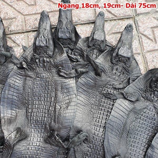 Da Ca Sau Nguyen Con Nho Ca Teppi Dai 75cm 1