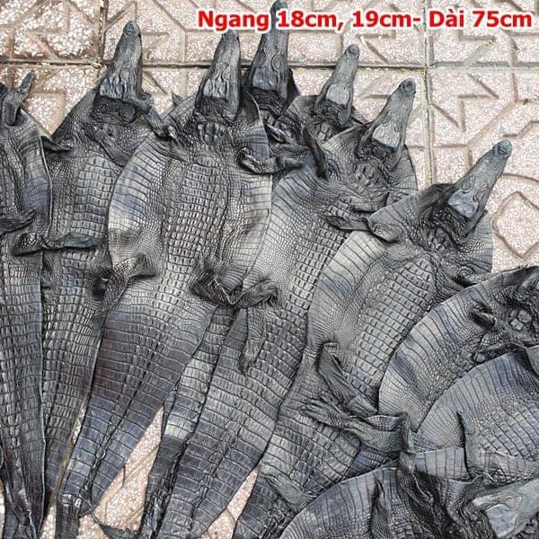 Da Ca Sau Nguyen Con Nho Ca Teppi Dai 75cm 2
