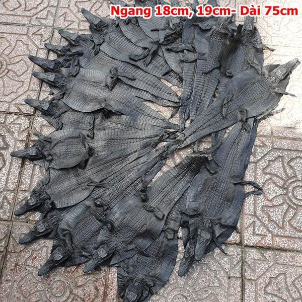 Da Ca Sau Nguyen Con Nho Ca Teppi Dai 75cm 4