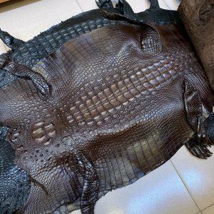 Da Cá Sấu Thuộc Nguyên Tấm Cá 4 Lớn (45-49cm)