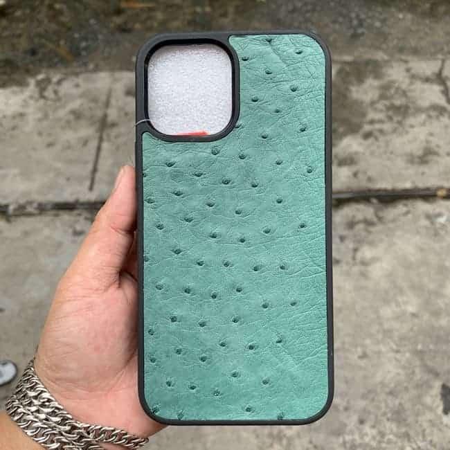 Op Dan Da Ca Sau Iphone 12 Promax 10