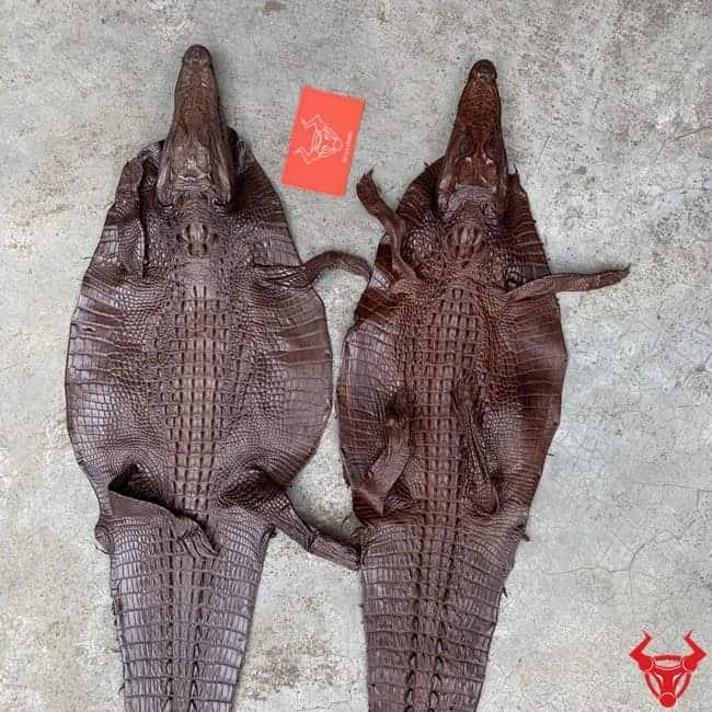 Da Ca Sau Teppi Nguyen Tam Loai Nho 1
