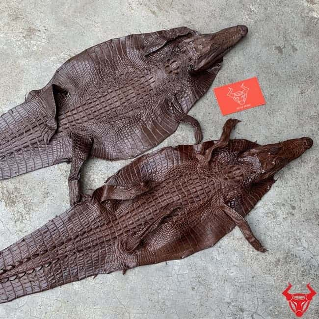 Da Ca Sau Teppi Nguyen Tam Loai Nho 2