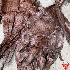 Da Cá Sấu Teppi Nguyên Tấm Loại Nhỏ